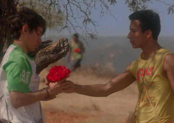 El tigre y la flor